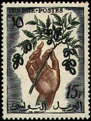 This is a Tunisian stamp. Olives are just some of my favorite things. How many things come from pretty trees, you can eat them, make oil out of them, and cook with them? Hm?