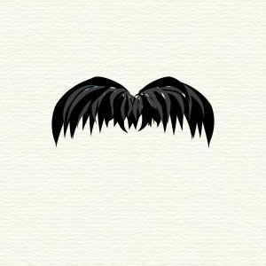 300px-Chevron-moustache.svg